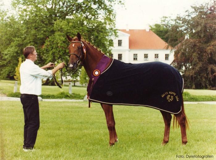 Elta - Årets hoppe 2004